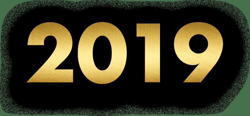 L'équipe de Therapeutic IMPACT vous présente ces meilleurs vœux et vous souhaite une bonne année 2019!